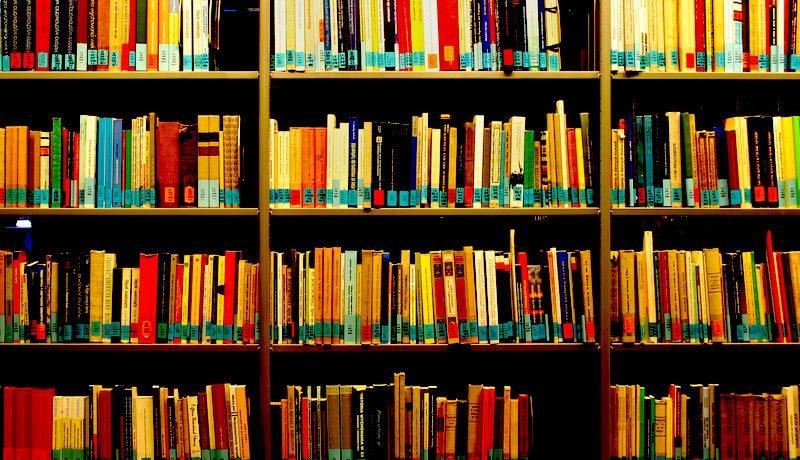 Foto mostra estante de biblioteca com diversos livros