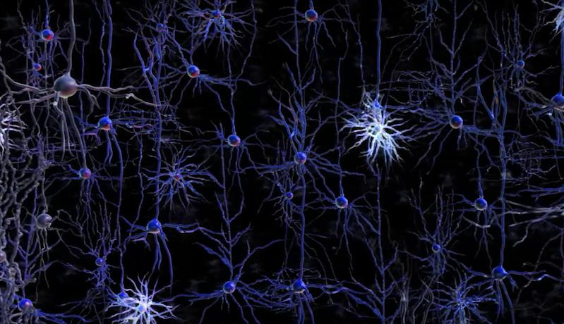 Imagens de neurônios
