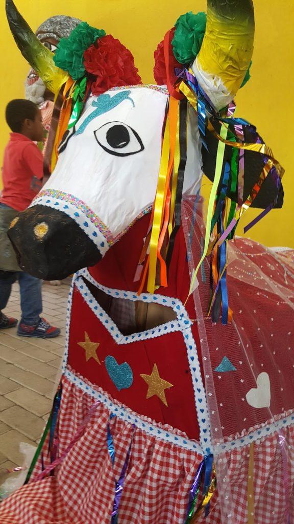 Festa ao Boi Pantaneiro no Jardim Pantanal. Foto: Márcia Duarte