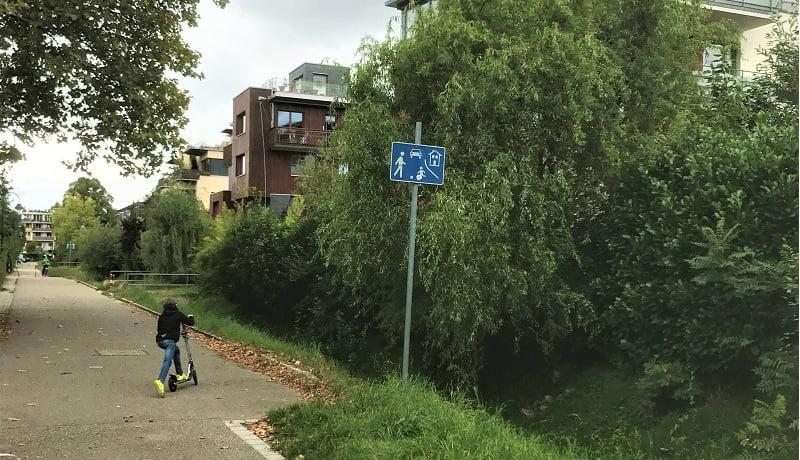 Criança de costas leva uma bicicleta pelas ruas do Bairro de Vauban, na Alemanha. Apesar de ser uma rua asfaltado a podemos notar a presença da natureza no entorno.
