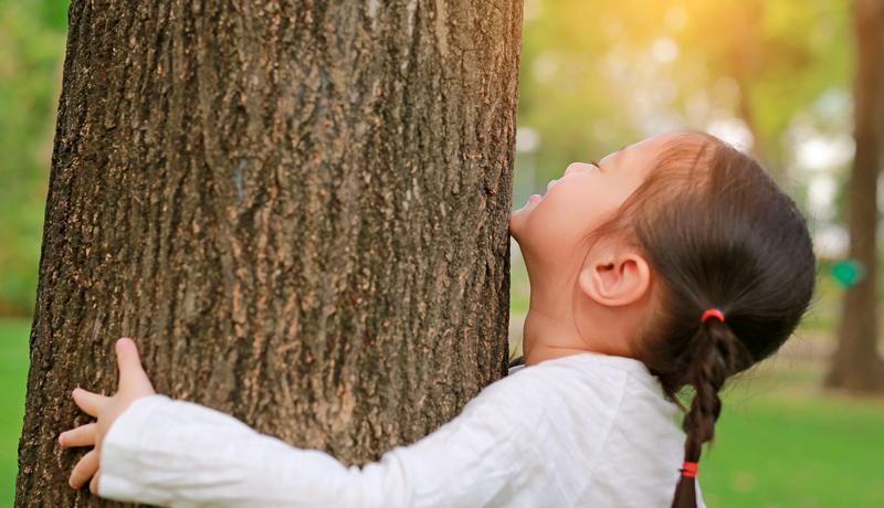 Foto de criança que abraça o tronco de uma grande árvore